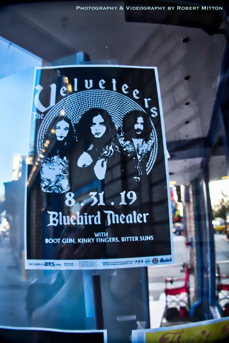 The Velveteers Bluebird Poster
