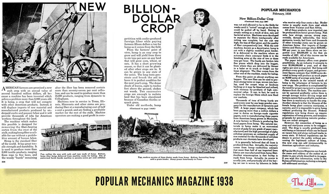 Hemp, the World's First Billion Dollar Crop